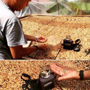 De koffiewasser van Tuis | Zwartekoffie.nl