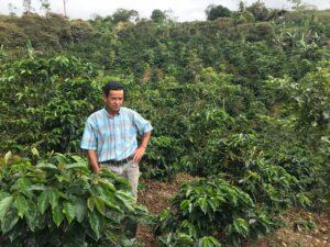Don Enrique op de koffievelden